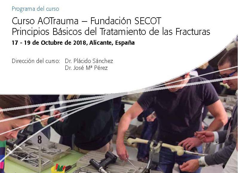 CURSO AOTRAUMA – FUNDACIÓN SECOT PRINCIPIOS EN EL TRATAMIENTO QUIRÚRGICO DE LAS FRACTURAS